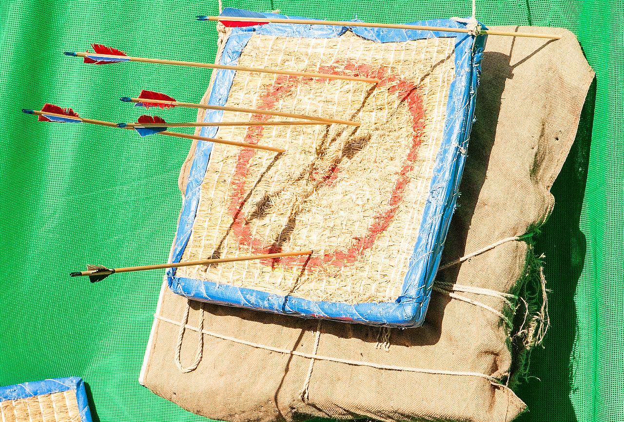 Eine Zielscheibe mit einigen Pfeilen die ins Ziel gefunden haben.